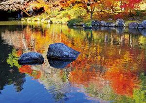 紅葉スポット-成田山