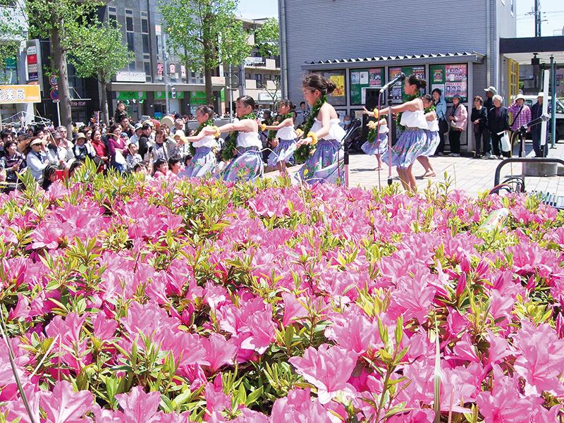【八千代市】花と緑であふれる、地域交流の場 八千代 ゆりのき台 つつじ祭り